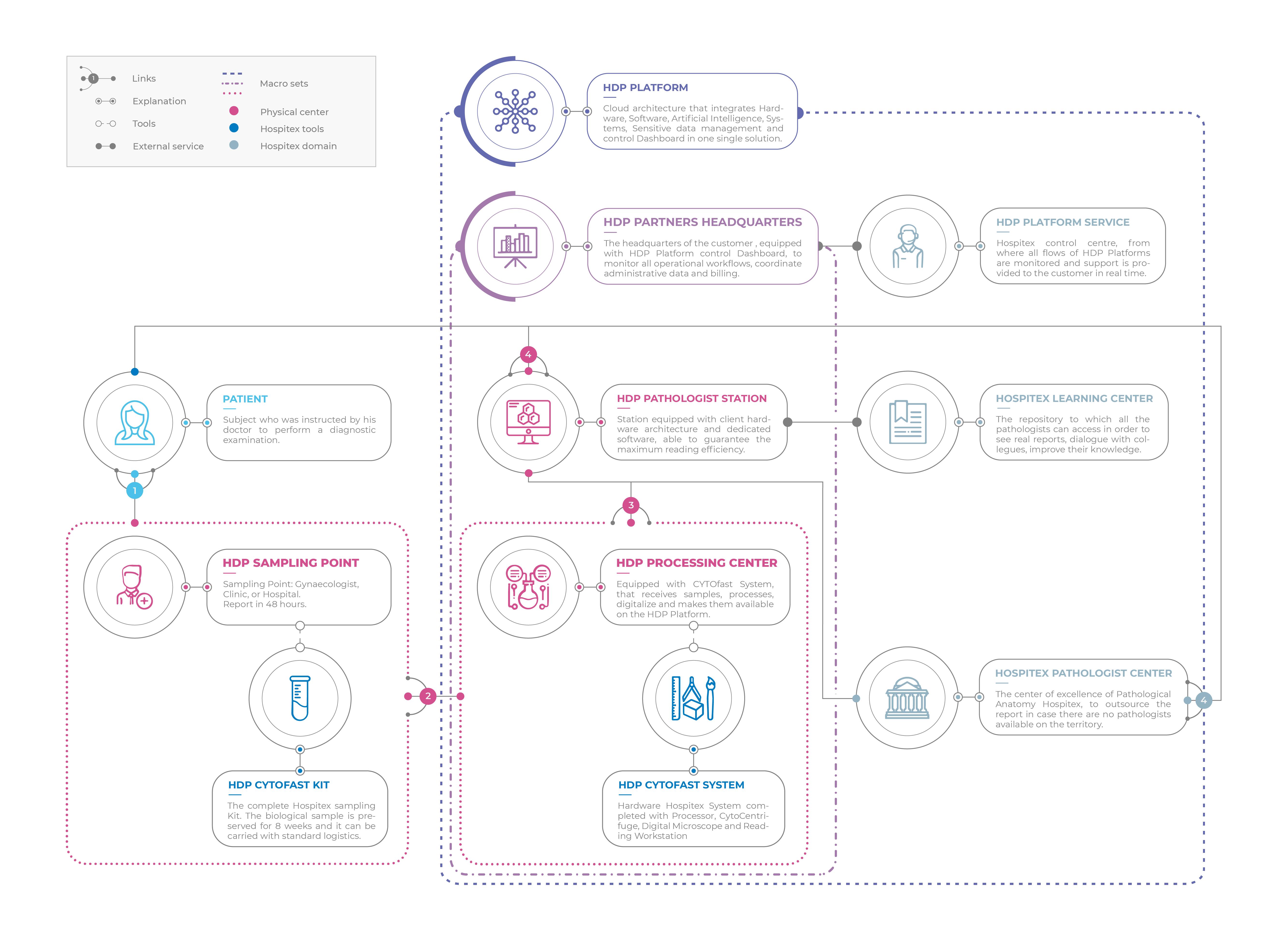 https://www.hospitex.com/wp-content/uploads/2021/06/Infografica-Digital-Pathology_English.png