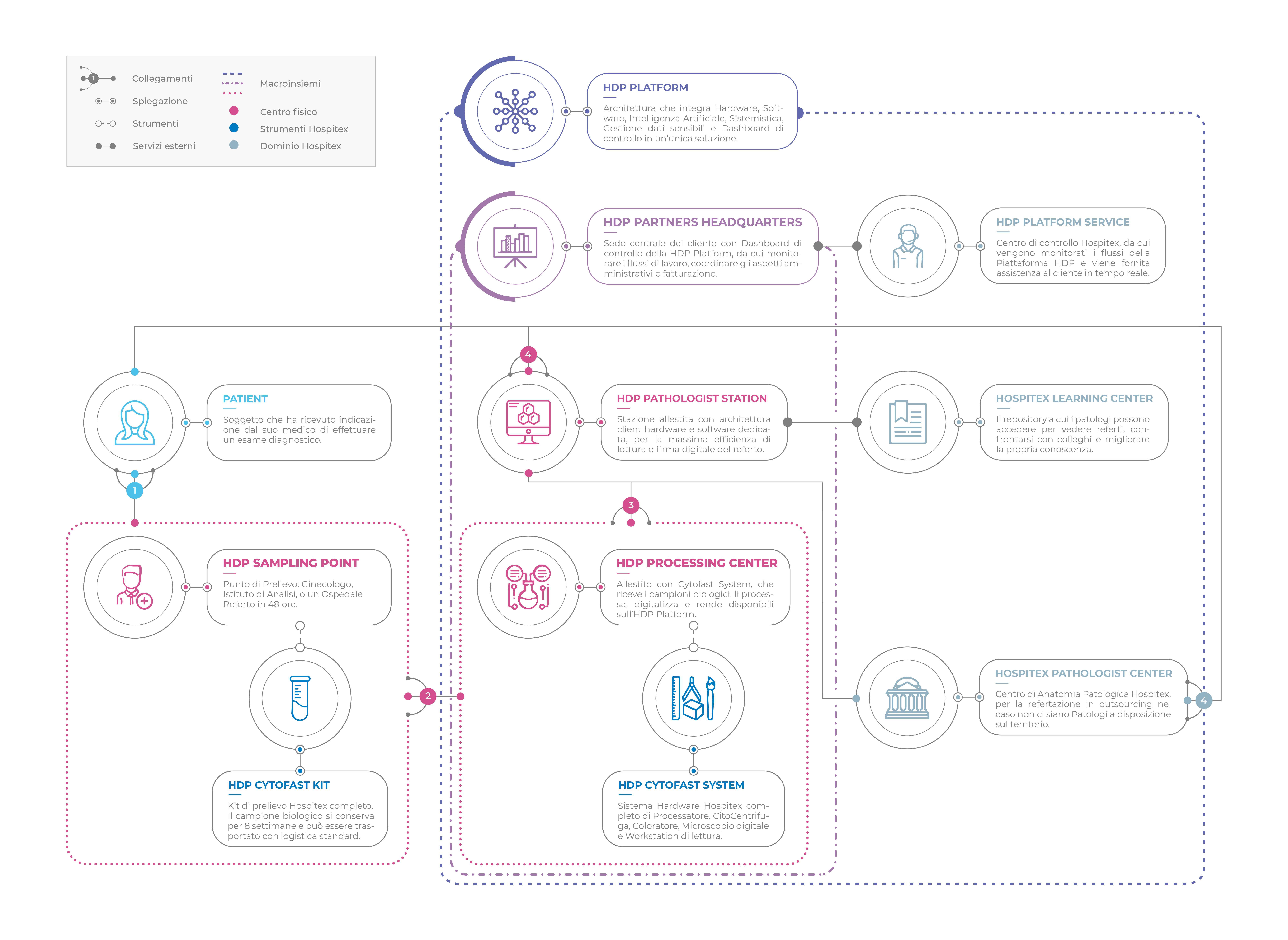 Digital Pathology Infographic - Hospitex International